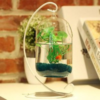 O.RoseLif Big Size Glass Vase Home Decor Aquarium Suitable Fish Tank Wax Gourd Glass Bottle + Iron Holder  Set  Flower Ball Vase