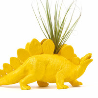 Dinosaur planter, Yellow Office Home Desk Decor, with air plant