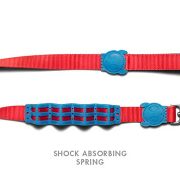 Mika | Shock Absorbent Dog Leash