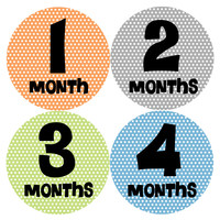 Baby Boy Monthly Milestone Stickers Style #197