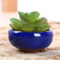 New Arrival 2016 Home Decor Mini Round Juicy Plants Flowers Vase Ceramic Flowerpots Small Bonsai Pot DIY Accessories