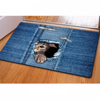 Kitty Door Mat