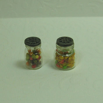 Dollhouse Miniature Pair of Bottles with Berries & Buds - B