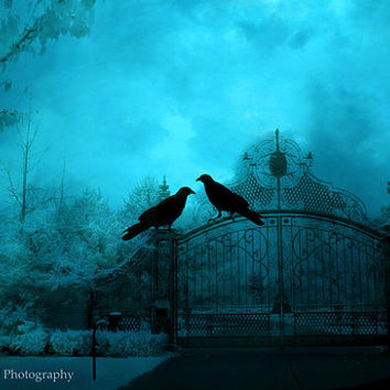 Surreal Gothic Photography, Blue Dark Haunting Ravens Crows Gate Photo, Gothic Ravens Spooky Eerie Blue Gate, Fine Art Photograph