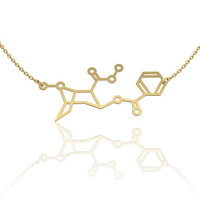 Cocaine necklace - 14K gold chemistry jewelry, chemistry necklace, molecule necklace