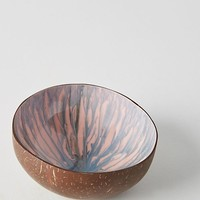 Stained Coconut Bowl