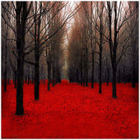 Red and black  Wall Decor  Trees and forest in dark by Raceytay