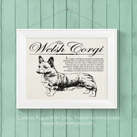 Welsh Corgi Storybook Style Canvas Print: A rustic and vintage wall art / home decor piece printed on archival quality canvas paper