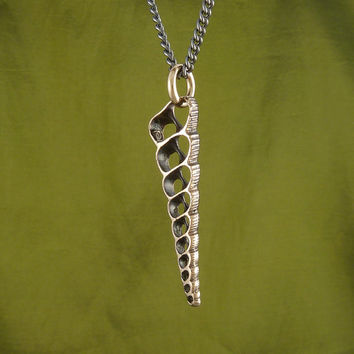 "Shell Necklace Bronze Spiral Shell Pendant on 24"" Gunmetal Chain"