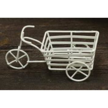 Mini Tricycle Cart - *FREE SHIPPING*