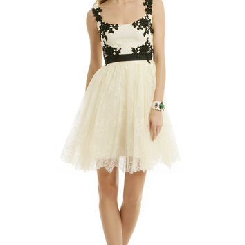 Marchesa Notte Anabelle Dress