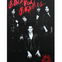 Black Veil Brides Black And White Group Poster