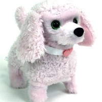 Paris the Fabulous Walking Poodle Puppy, Pink or White