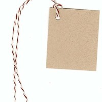 """100 Blank KRAFT Hang Tags (1-3/4"""" x2-1/8"""") & 100 BROWN Bakery Twine Strings for Crafts & Gifts. Personalize & Price your merchandise."""