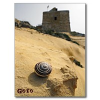 Shell and Tower, Gozo, Malta