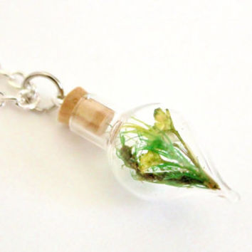 Terrarium Necklace Mini Glass Bottle Moss Flowers