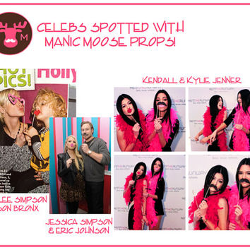 Pig Snout Photo Booth Prop - Pig Nose on a stick - Birthdays, Weddings, Parties - Great Photobooth Props