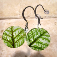 Step Moss (Hylocomium splendens) aka Mountain Fern Moss Earrings, woodland jewellery, nature jewelry, plant, leaf, bryophyte, bryophytes