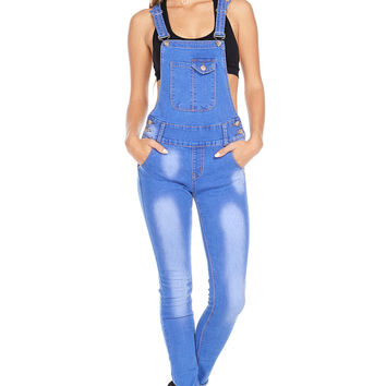 Modern Muse Skinny Overalls