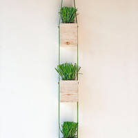 3 Tier Wood and Leather Hanging Wall Planter