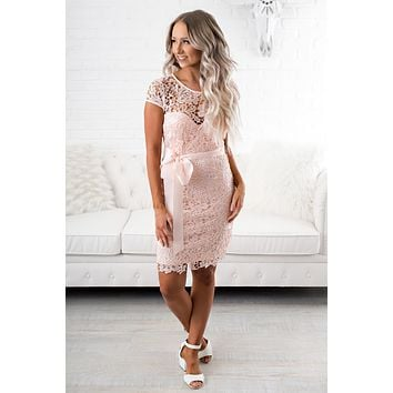 Dixie Charm Crochet Dress (Pink)