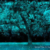 50% OFF SALE Nature Photography, Fantasy Nature, Twinkling Stars Lights, Fairytale Woodlands, Aqua Teal Trees, Fantasy Trees Forest 8x12