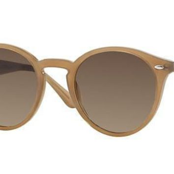 Ray Ban Round Sunglass Turtledove Gradient Brown RB 2180 616613