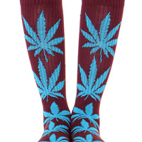 WINE/JADE PLANTLIFE SOCKS