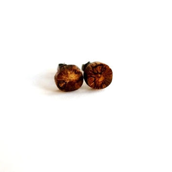 Tiny Post Earrings Wood Tree Branch Studs Eco Friendly Reclaimed Wooden Jewelry by Hendywood