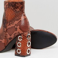 The March Tan Snake Eyelet Detail Heeled Ankle Boots at asos.com