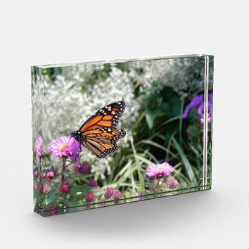 Monarch Butterfly Purple Aster Photo Block