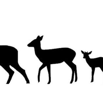 Deer Silhouette Family Vinyl Car Decal