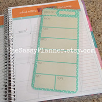 FREE SHIPPING Weekly Laminated Dashboard Insert for Erin Condren Life Planner/Plum Paper Planner - clips right into coils!