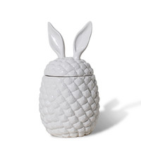 Pineapple Rabbit Ear Container