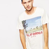 Selected T-Shirt With Cactus Print -