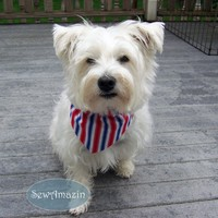 Red White and Blue Patriotic Dog Bandana, Collar Slipcover, Medium