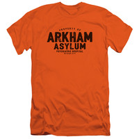 BATMAN/ARKHAM ASYLUM-S/S ADULT 30/1-ORANGE