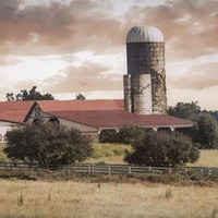 Farm 2 #silo #rural by Andrea Anderegg Photography