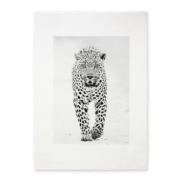 Leopard drawing 5'x7'Area Rug on CafePress.com