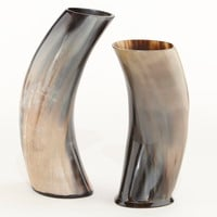 Horn Vases, Set of 2