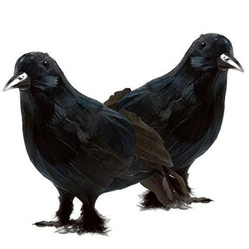 2 Piece Realistic Black Crows