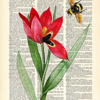 Tulip poster, flowers illustration print, bumble bee and red tulip print, Dictionary Pages, home dorm wall decor, CODE/230