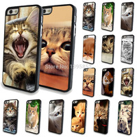 Free shipping New Brand Lovely Cat Painted Plastic Cases for iPhone 5/5S WHD745 1-15