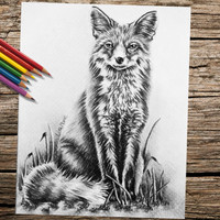 Fox Animal coloring book page, adult coloring book, coloring page, adult coloring page, coloring book, printable coloring page, Best selling