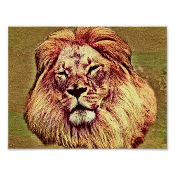 African Brown Lion Oil Painting Art Poster