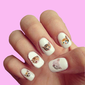 Kittens and Cats   - Nail Art - Nail Decals