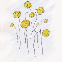 Yellow flowers watercolor illustration. Globeflowers drawing. Floral wall art for home decor. 8.3 x 11.7''