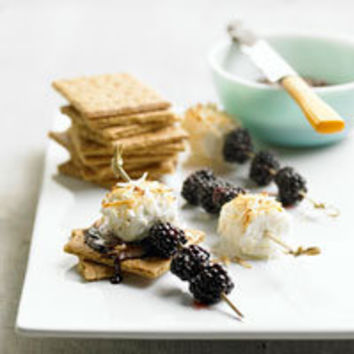 Coconut Fruit S'Mores Recipe