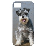 Happy Mini Schnauzer Sitting On Beach iPhone Case