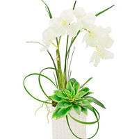 Creative Displays Orchard and Cactus Flower Arrangement - Green